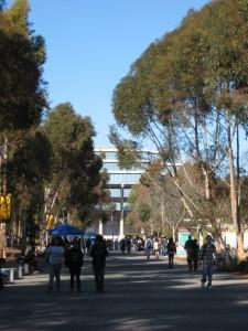 По улицам снуют студенты