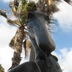 Пеликан - птица гордая