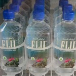 FLU в бутылочках