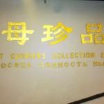 Написать без ошибки в Китае не могут