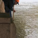 Ловля рыбы длинным сачком