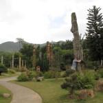 Сад окаменевших деревьев