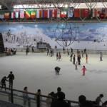 В парке можно покататься на коньках