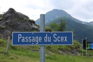 В городе Mex есть Passage du Scex