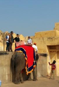 Со слона выгружаются на парапет