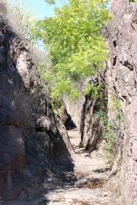 Пустынно-каменный парк