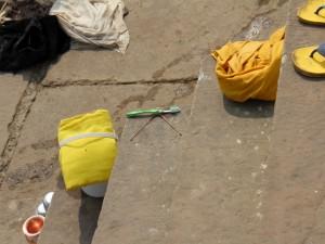 В Ганге можно мыться и чистить зубы